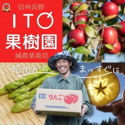信州 飯綱東高原農場/ITO果 樹 園