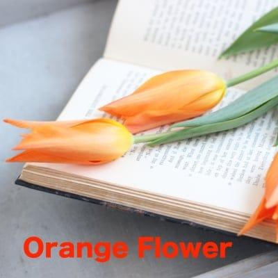ステキ女子への生き方革命◆orange flower
