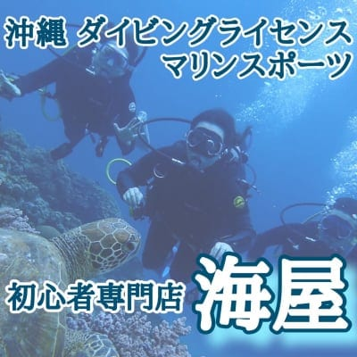 沖縄ダイビング・マリンスポーツ初心者専門店海屋