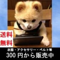 ★全国送料無料★300円通販ショップ★ココ太郎