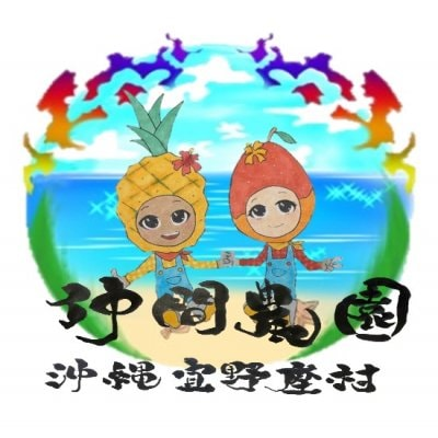 沖縄宜野座村産完熟マンゴー・パイン水と緑と太陽の里宜野座村からお届け    仲間農園