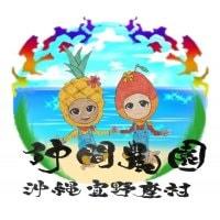 沖縄宜野座村産完熟マンゴー 水と緑と太陽の里宜野座村からお届け  仲間農園