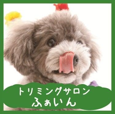 愛犬のトリミングをご褒美に。小型犬専門トリミングサロンふぁいん 江東区亀戸 