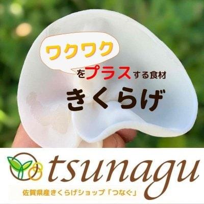 【佐賀県産 白&黒 きくらげ通販】tsunagu-つなぐ-
