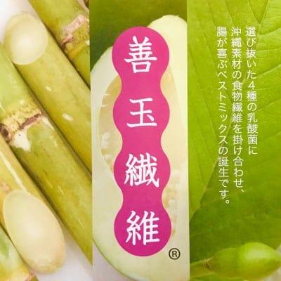 沖縄スーパーフード 乳酸菌サプリメント沖縄バイオリサーチ