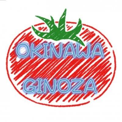 有機の里沖縄宜野座村からお届けするベビーリーフ|NAKAMA農園