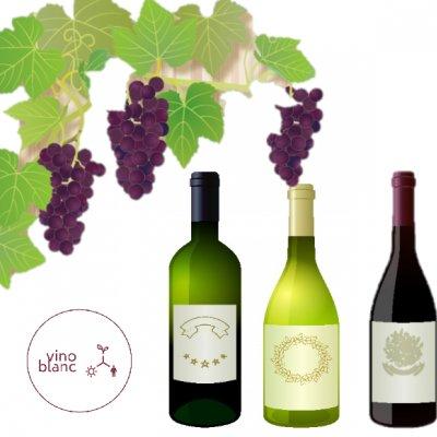 お酒のお店 〜vino blanc〜 ビノ ブラン