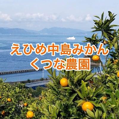瀬戸内海に浮かぶ愛媛の中島みかん【くつな農園】