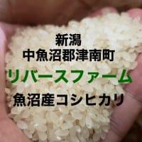 新潟から美味しいお米をお届け|リバースファーム