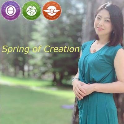 【神奈川県川崎市】Spring of Creation