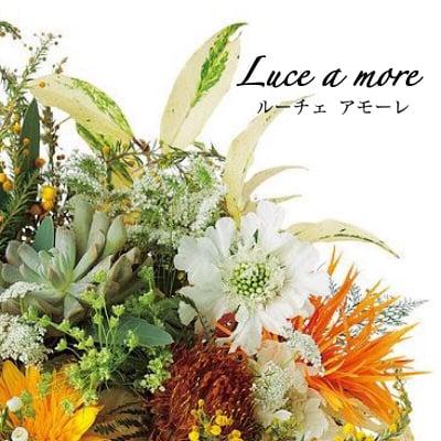 美のセレクトショップ『Luce amore(ルーチェアモーレ)』