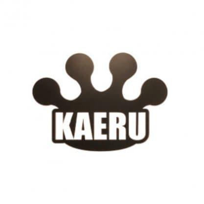 奈良県橿原市〜カイロプラクティックセンター奈良KAERU整体院〜