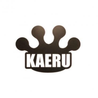 カイロプラクティックセンター奈良KAERU整体院🐸かえる整体〜橿原市
