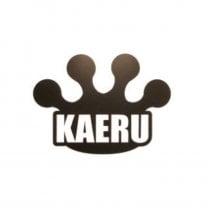 かえる整体院〜奈良KAERU〜カイロプラクティックセンター奈良KAERU整体院〜橿原市