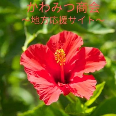 かわみつ商会 〜こだわりセレクトショップ〜