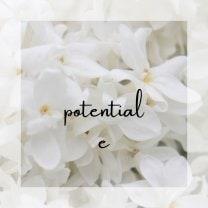 ホームページ作成であなたの魅力を惹きだす/potential
