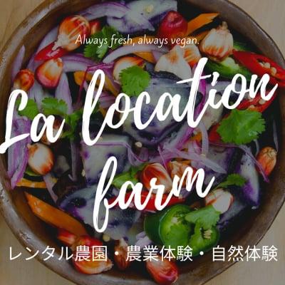 農業体験/自然体験/レンタル農園/米販売/野菜収穫/つくばの自然で遊ぼう/ラルケーション・ファーム/