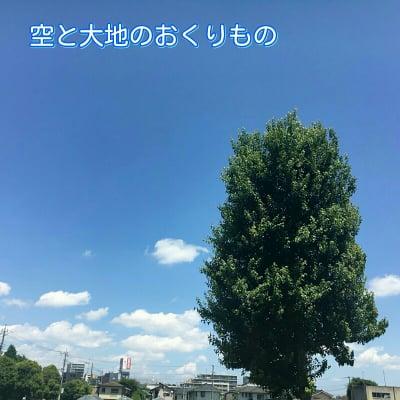 空と大地のおくりもの