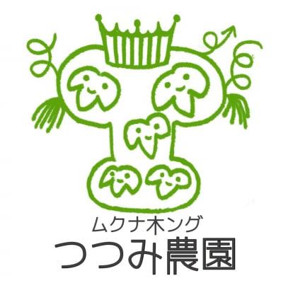 ムクナ豆の熊本県産100%なら  ムクナ木ング つつみ農園