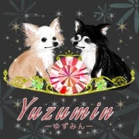 【ゆずみん】/セレクト/スワロフスキー/アクセサリー/ハンドメイド/奈良