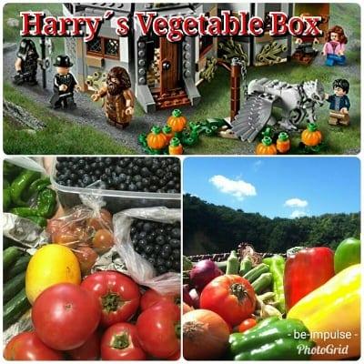奈良山麓野菜/ハリーのベジタブルBOX
