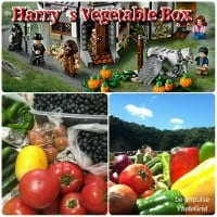 奈良山麓野菜 ハリーのベジタブルBOX