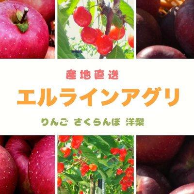 エルライン 〜朝日町の農家が本気で開発した方式で作る美味しい甘い次世代フルーツ〜