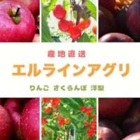 果物王国山形 〜朝日町の農家が本気で開発した方式で作る美味しい甘い次世代フルーツ〜