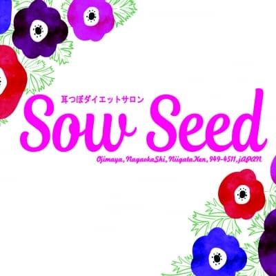 耳つぼダイエットサロン sow seed