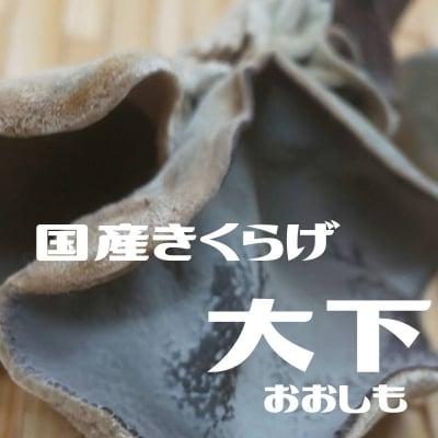 「国産きくらげ」【大下(おおしも)】/鳥取きくらげ物語/智頭町