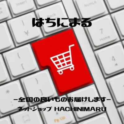 ネットショップ はちにまる Okinawa