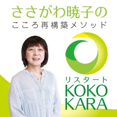 自己啓発ジプシーを30日で解消!/こころ再構築<リスタート・KOKO-KARA>/新潟・全国対応