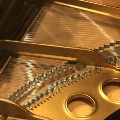 音楽教室やコンサート情報等を紹介する「MCXプロモーション」