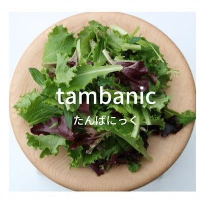 TAMBANIC.たんばにっく