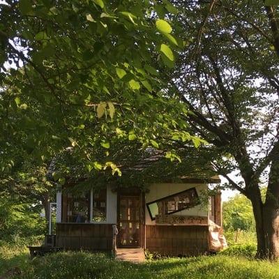 PADOMA|鹿児島市スピリチュアル|自然療法|ホロスコープ|オーガニック|ホメオパシー