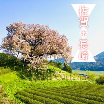 佐賀/長崎 応援サイト