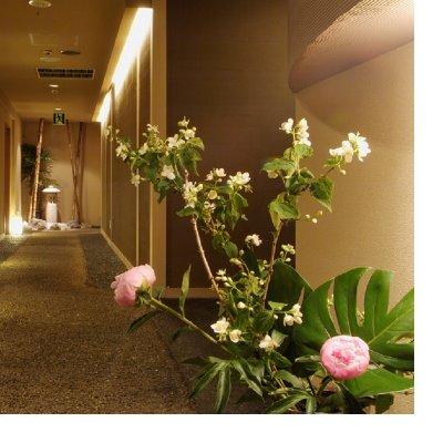 札幌すすきの和食の一乃喜/いちのき個室とコース料理/接待、会合、内祝い、旅行/おすすめ
