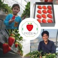 リトリファーム 〜鳥取県産いちご/その他フルーツ・野菜の直送通販〜