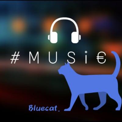 Bluecat.