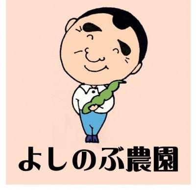 よしのぶ農園【スイカの名産地熊本県植木町からムクナ豆とおいしいもの!イイモノ!をお届け!】