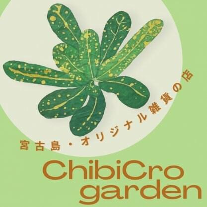 沖縄の自然の恵みや手作りにこだわる南国の植物「クロトン」デザイン専門の店『ChibiCro garden/チビクロガーデン』