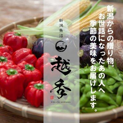 新潟 魚沼ギフト販売の越季(こしき) 越後の自然の恵みに感謝し、旬の味を産地直送でお届けします。