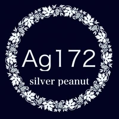 Ag172 手縫でチクチク革小物