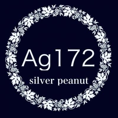 Ag172|手縫でチクチク革小物