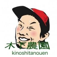 木下農園/丹波産・丹【まごころ】いちご