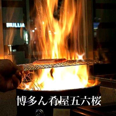 福岡/博多ん肴屋五六桜/ごろー