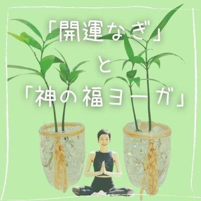 オンラインZoomヨガ|寺ヨガ❘インドのアシュラムから生まれた真理を伝えるヨガ