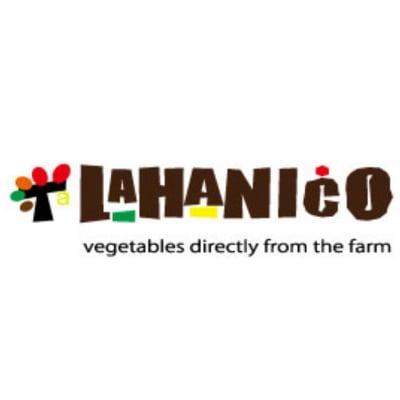 LAHANICO沖縄 〜こだわりの野菜と果物販売〜