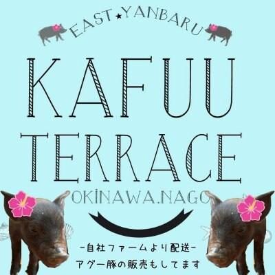 自社ファームで育てたアグー豚の販売 海の見えるカフェ『KAFUU TERRACE(カフーテラス)』