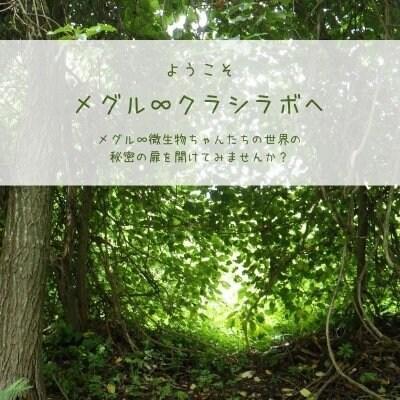 【メグル∞クラシラボ】